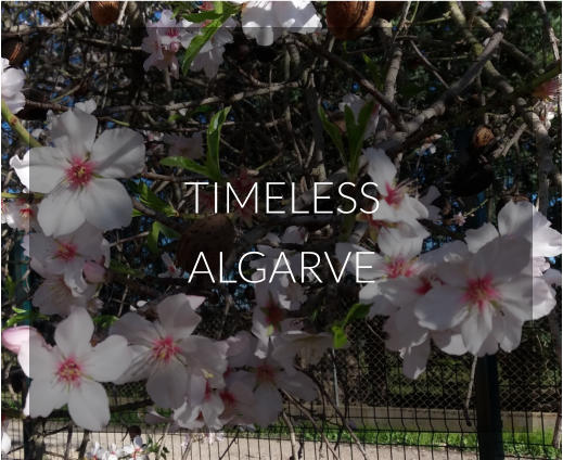 TIMELESS ALGARVE